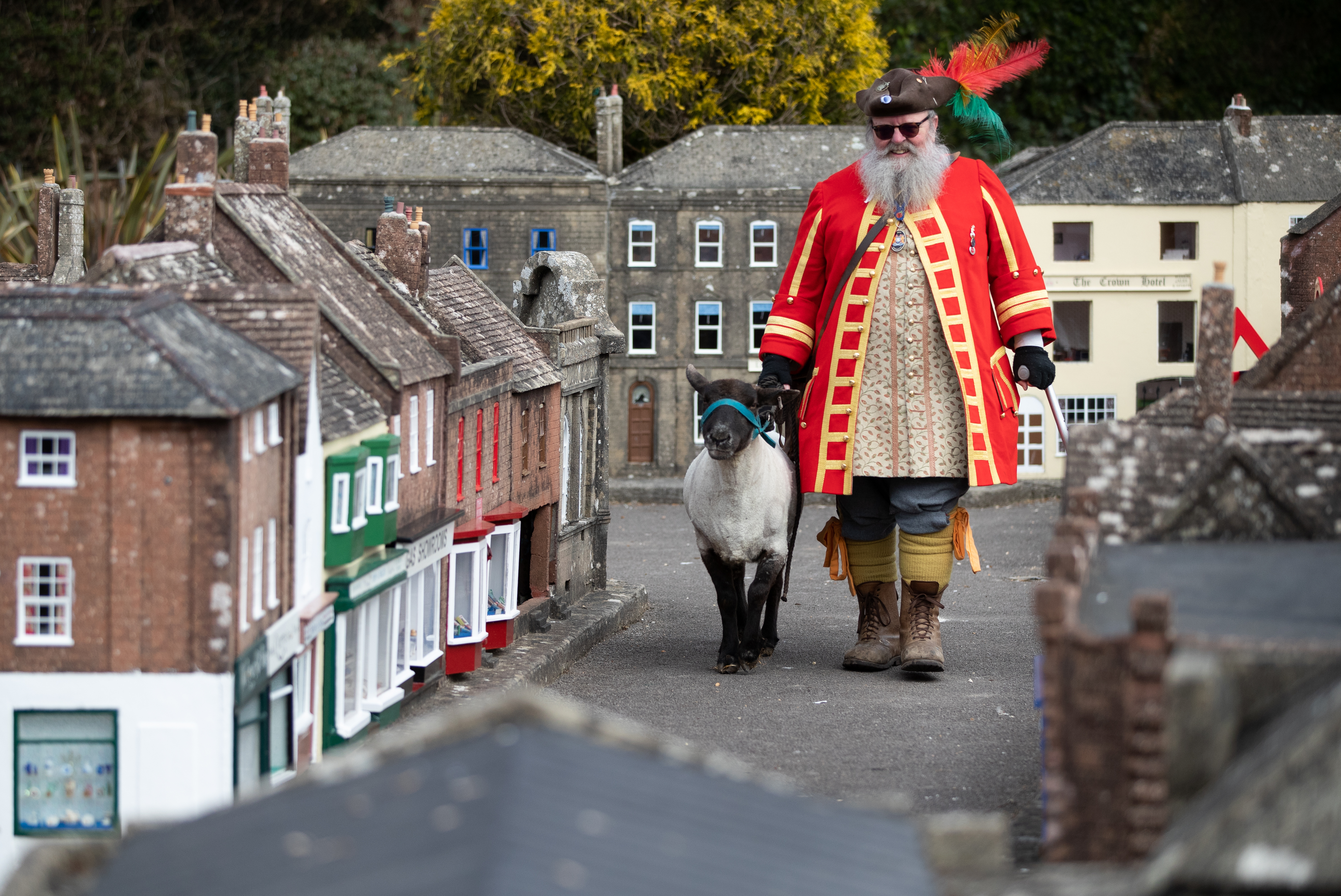<p>Chris Brown, the Town Crier and Mayor's Serjant of Wimborne Minster, in Dorset, exercises his right as an Honorary Freeman to drive sheep through Wimborne without charge, albeit through the Wimborne Model Town, to herald their re-opening on 12th April after the easing of lockdown restrictions. Picture date: Wednesday April 7, 2021.</p>