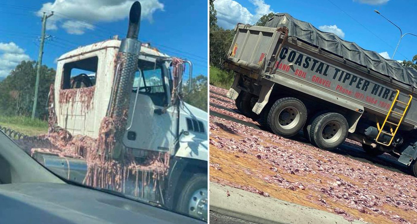 Highway turns pink after stomach-turning spill