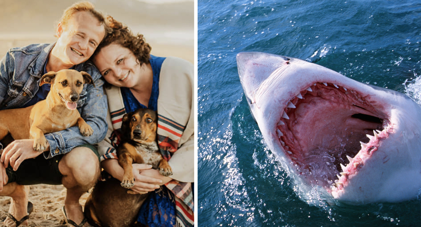 Fears groom was attacked by great white shark before wedding – Yahoo News Australia