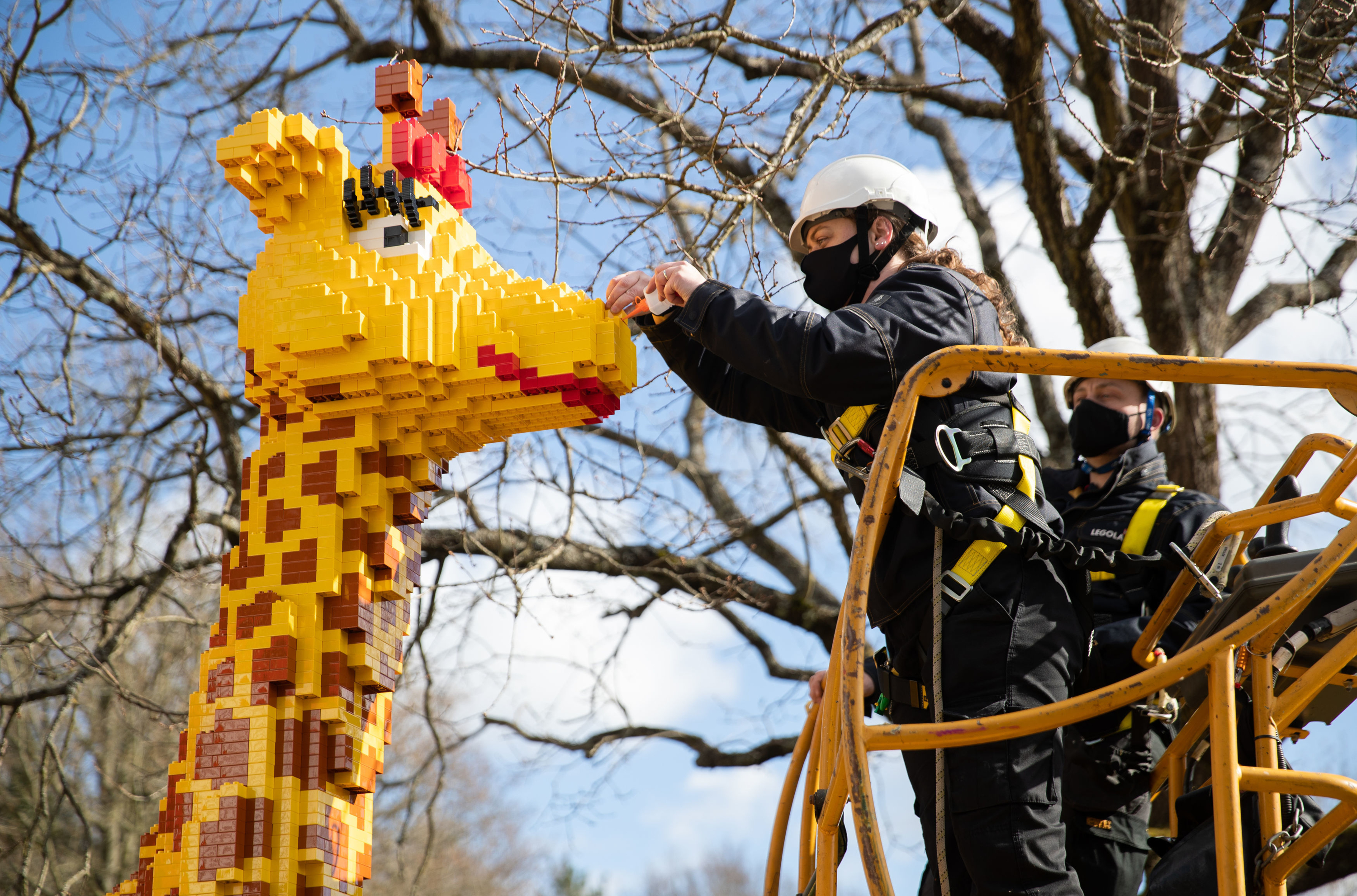 <p>RETRANSMITTING REMOVING EMBARGO Legoland Model Maker Nicola Parker adds a brick to a model of a Lego giraffe, as finishing touches are made at the Legoland Windsor Resort as they prepare to welcome back visitors on 12th April after the easing of lockdown restrictions. Picture date: Tuesday April 6, 2021.</p>