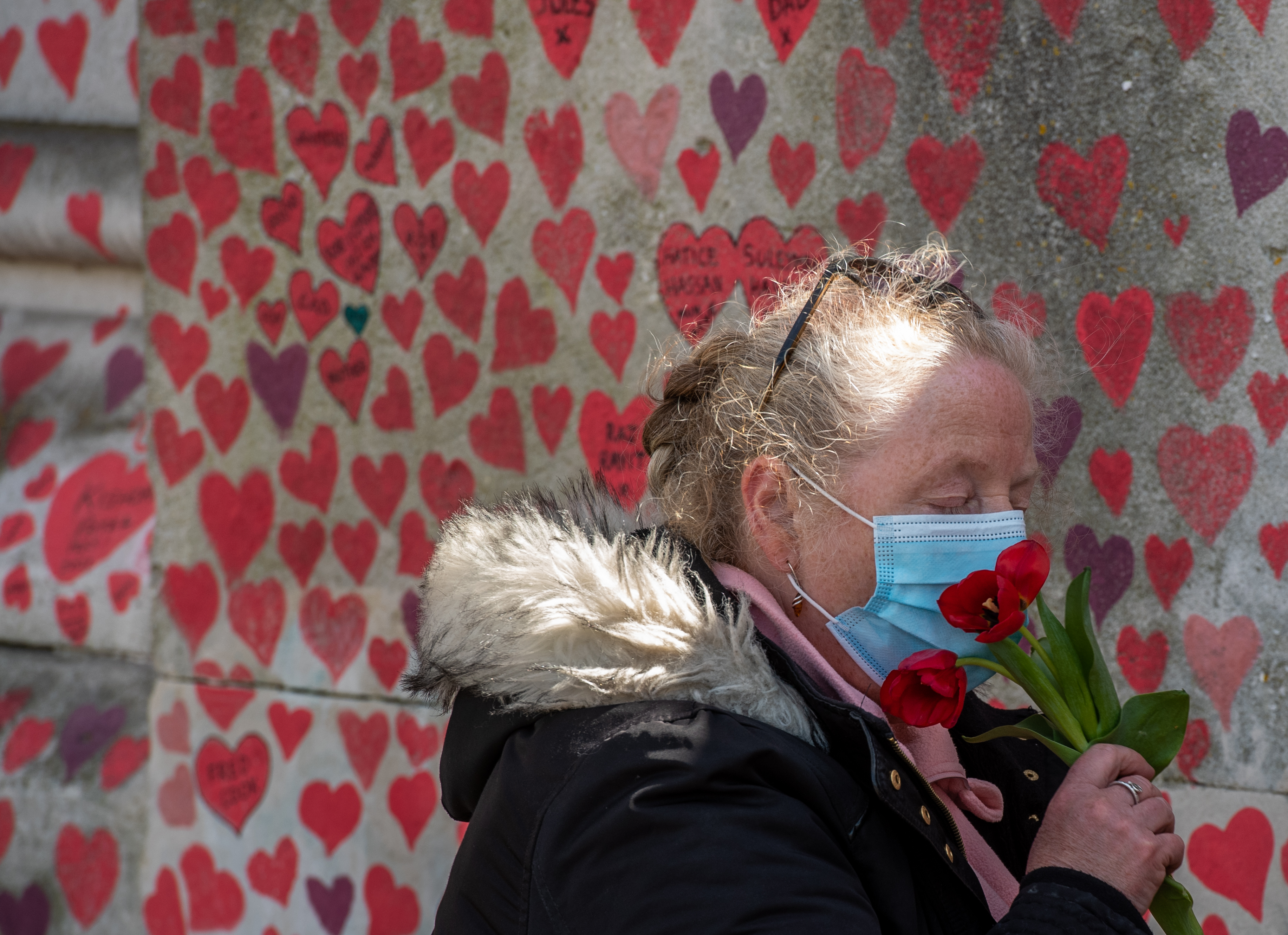 <p>LONDON, ENGLAND - APRIL 06: Cheryl Mayne smells tulips that she then leaves next to a heart she drew in memory of her brother Mark Sarnham who died from Covid-19 at the Covid-19 Memorial Wall that is nearing completion opposite Parliament on April 6, 2021, in London, England. Over the past week bereaved families have created a vast Covid-19 Memorial Wall, on the Embankment opposite the Houses of Parliament in Westminster, London. Painting individual red hearts for each of the lives lost to the virus, the group hopes to put personal stories at the heart of the Government's approach to learn lessons from the pandemic. Coronavirus is thought to be responsible for more than 145,000 deaths in the UK.   'This is an outpouring of love,' said Matt Fowler, co-founder of Covid-19 Bereaved Families for Justice, who lost his dad Ian, 56, to the virus. 'Each heart is individually hand-painted - utterly unique, just like the loved ones we have lost. And like the scale of our collective loss, this memorial is going to be enormous. We think it will take several days to complete and it's going to stretch for more than half a kilometre. We know not everyone can come down here to see it, but we really hope this can become a focal point for remembering this national tragedy. We have placed it at the heart of our capital so that the Government never loses sight of the personal stories at the heart of all this.' The group has committed to restoring the site at the appropriate time. Those taking part are socially-distanced in no more than groups of six on given sections of walls. (Photo by Chris J Ratcliffe For Covid-19 Bereaved Families For Justice/Getty Images)</p>