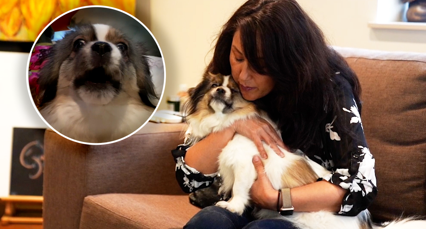 Pet communicator reveals a key mistake you might be making