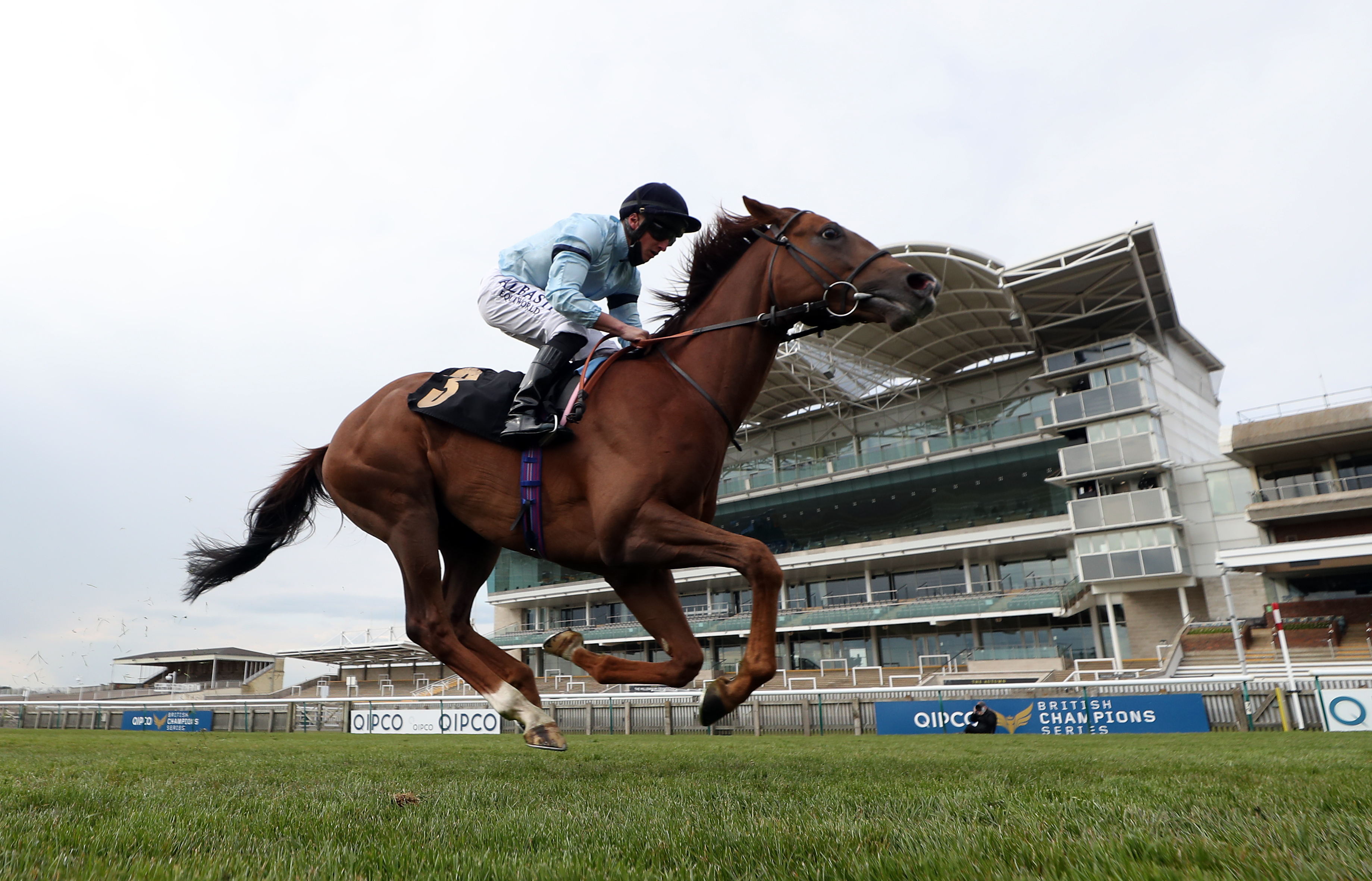 <p>Parachute ridden by jockey Tom Marquand on their way to winning the Betfair Weighed In Podcast Handicap during 1000 Guineas Day, part of the QIPCO Guineas Festival at Newmarket Racecourse. Picture date: Sunday May 2, 2021.</p>