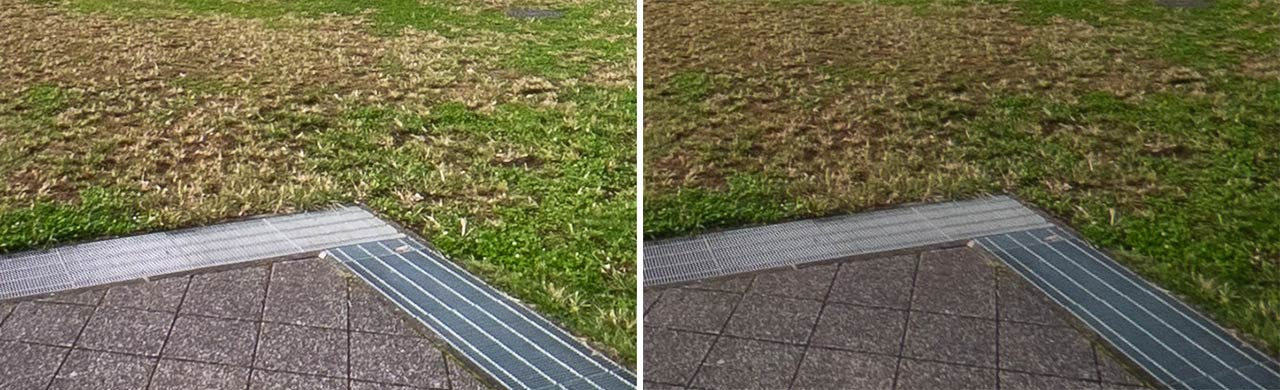 ▲ The impression of the lawn is completely different.The 2021 model is more natural with increased brightness and texture.