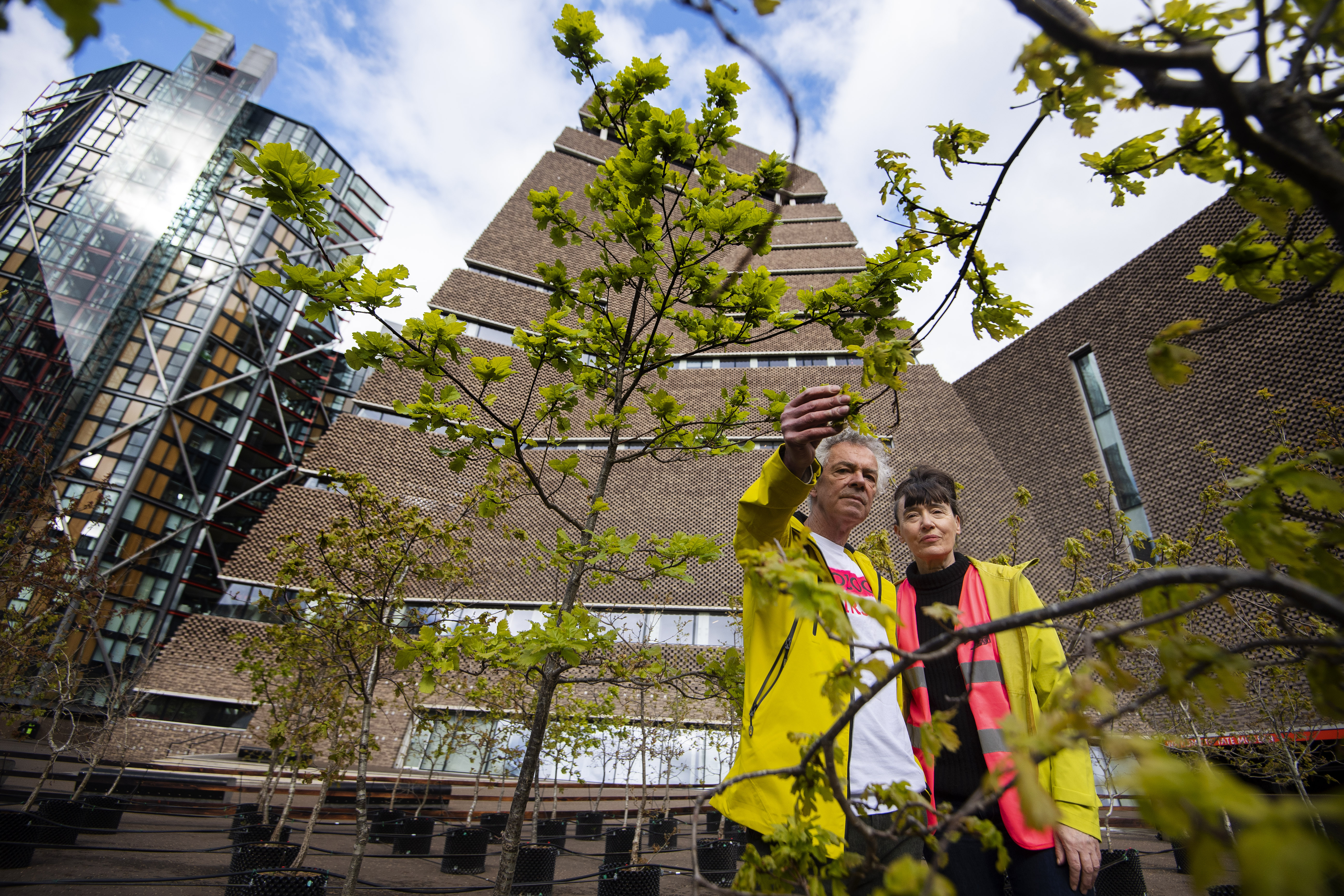 <p>Artists Heather Ackroyd and Dan Harvey stand within 100 oak saplings which form part of a living art installation entitled Beuys' Acorns by the UK-based artist duo, outside the Tate Modern in London. Picture date: Tuesday May 4, 2021.</p>