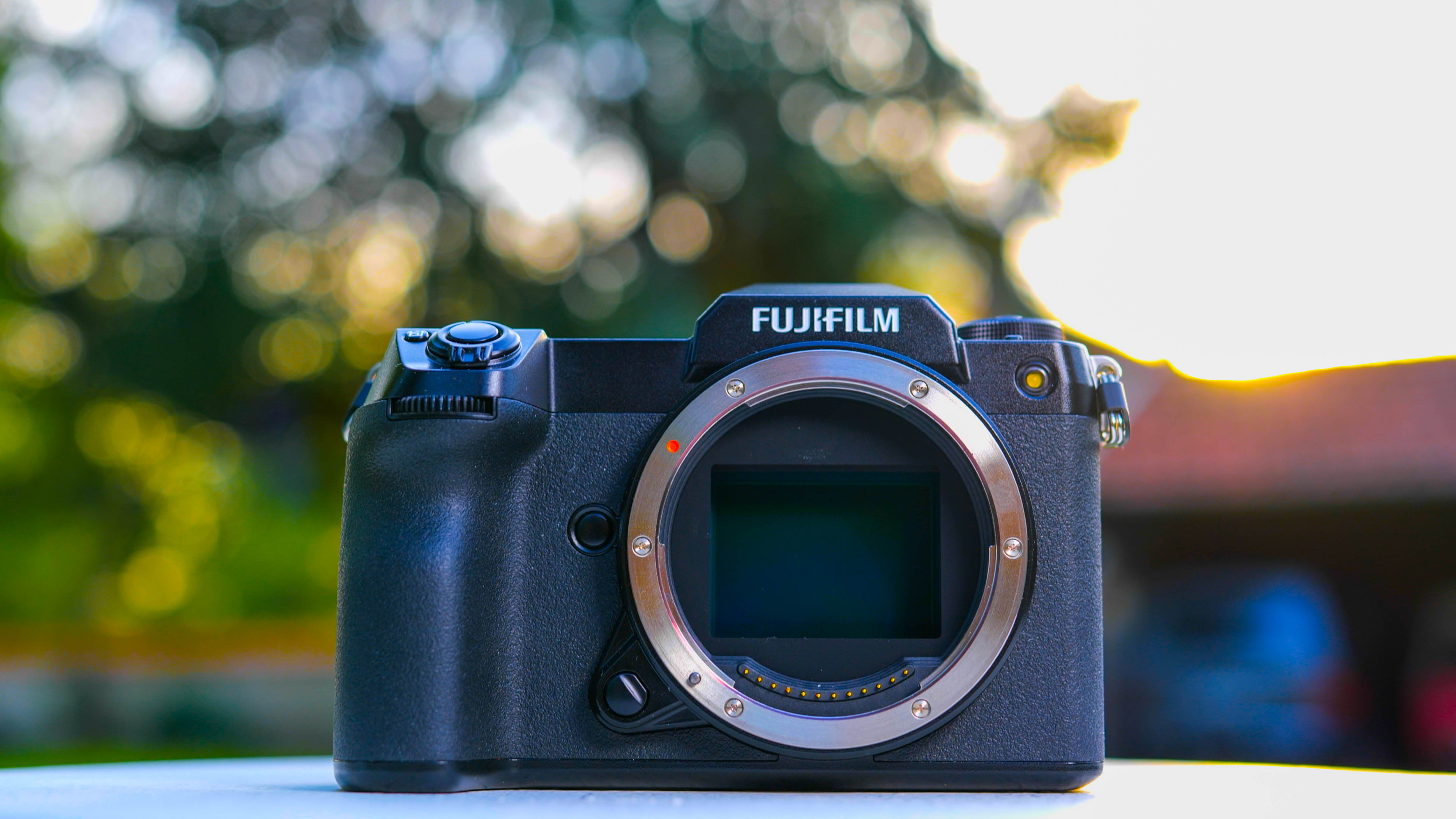 Fujifilm GFX 100S review: Medium format power in a smaller body