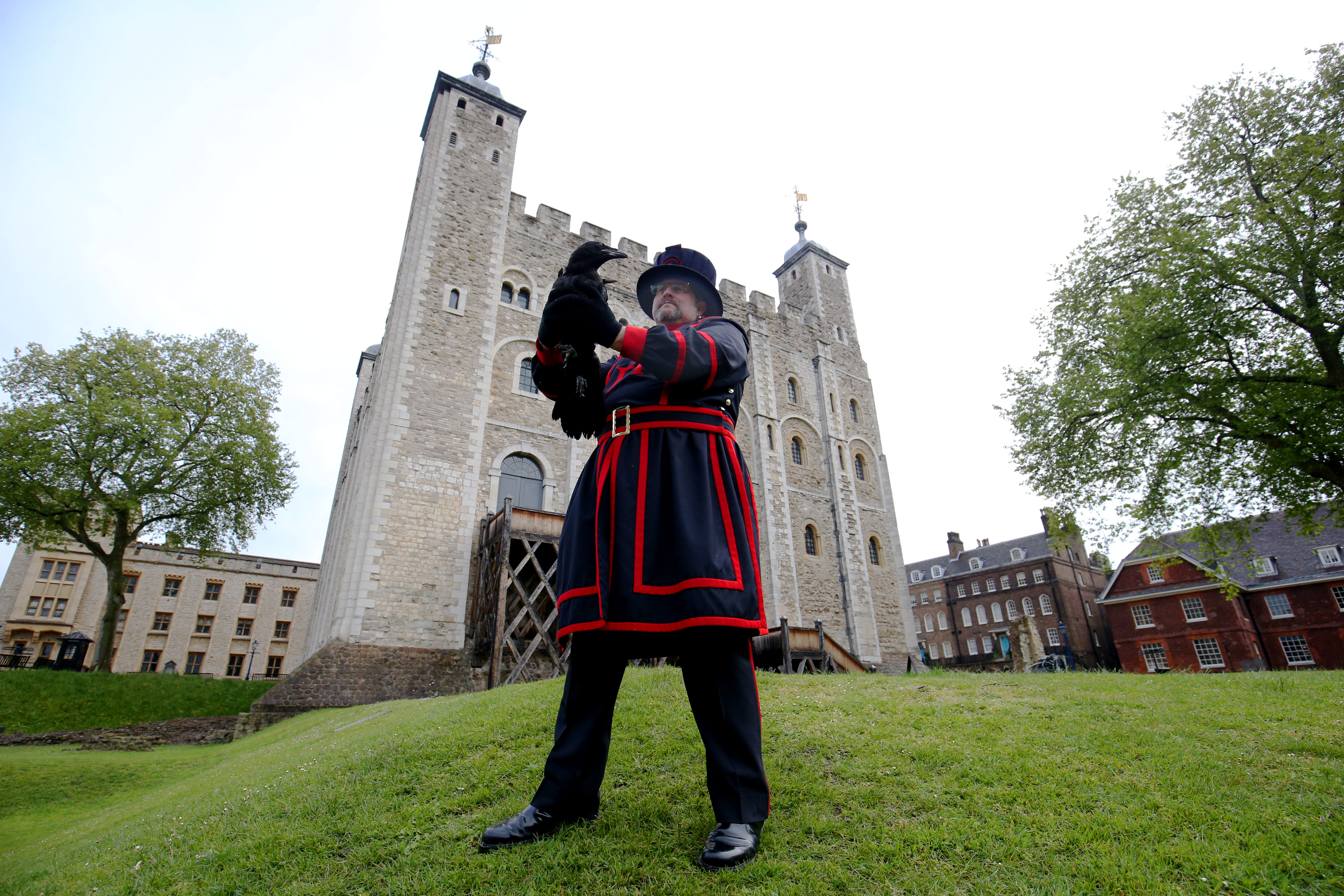 <p>Raven master Chris Scaife holds aloft Branwen, one of the two latest additions to the tower's conspiracy of ravens, in front of the White Tower at the Tower of London, which is reopening amidst the easing of coronavirus restrictions after its longest closure since World War Two. Picture date: Wednesday May 19, 2021.</p>