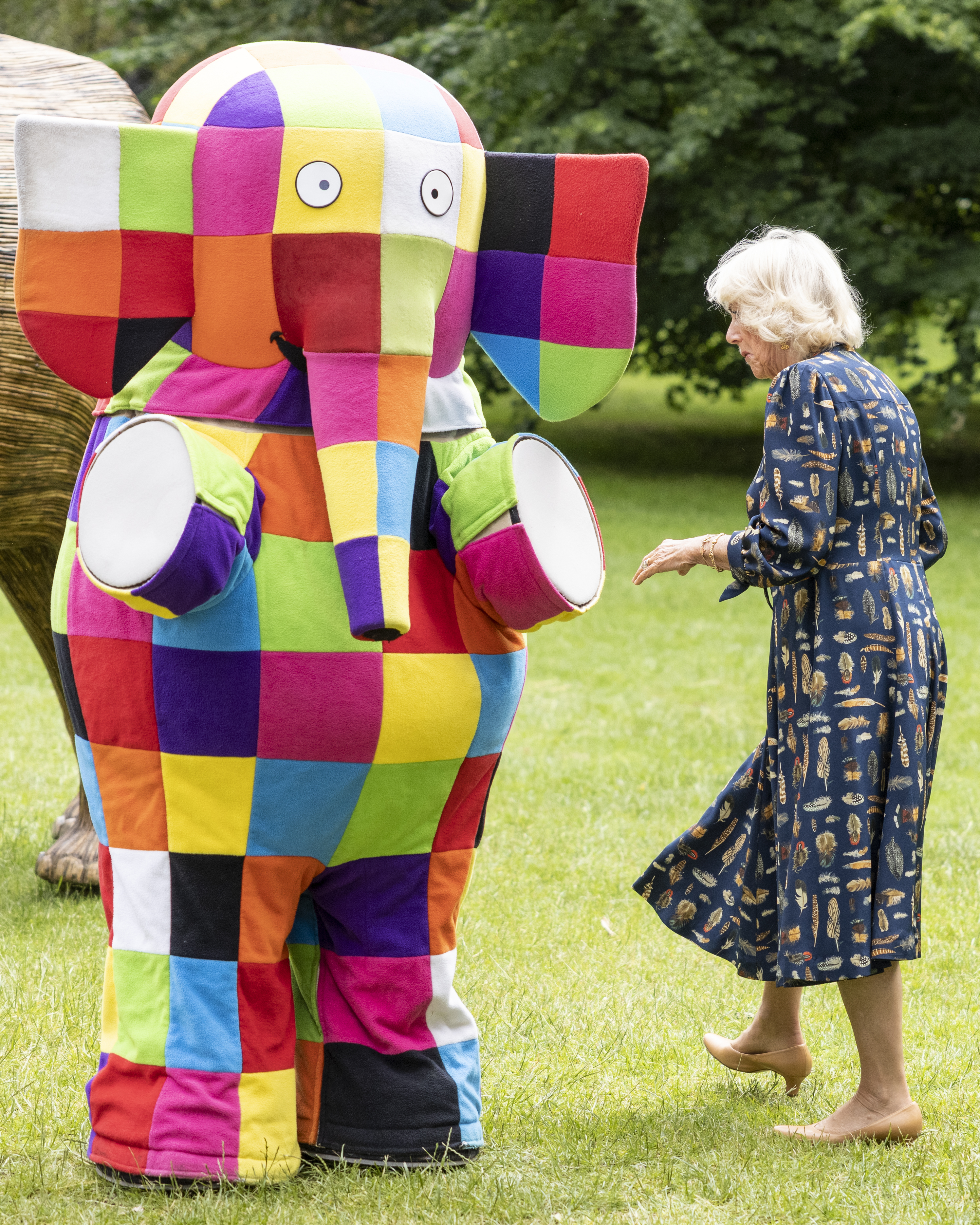 <p>The Duchess of Cornwall, Patron of the National Literacy Trust and Joint President of Elephant Family, in St James's Park, central London, during the launch of their Story Trail. Picture date: Tuesday June 22, 2021.</p>