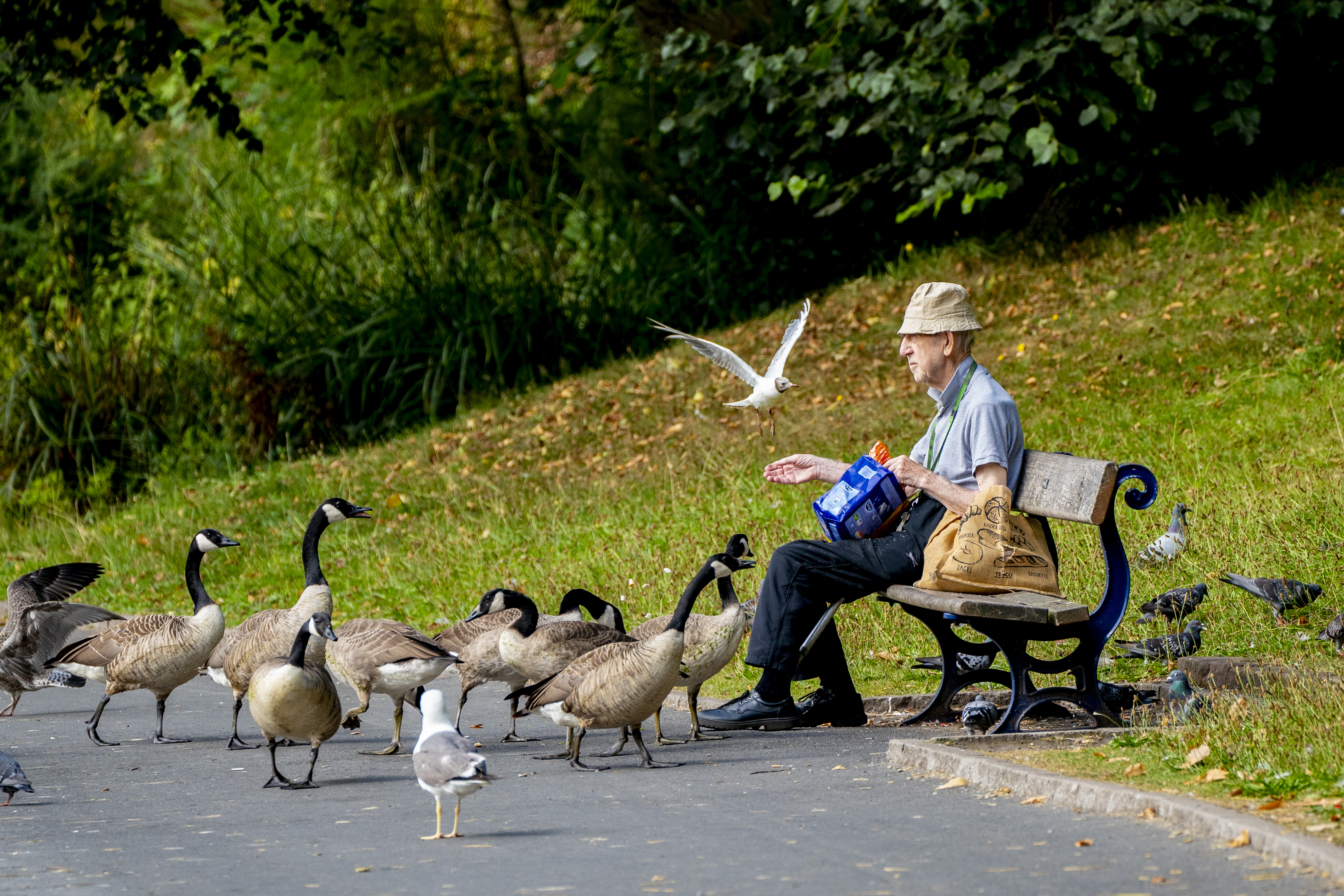 <p>A man feeds the birds by the lake at Sefton Park, in Liverpool, as the warm weather there continues. Homes, roads and Tube stations have been flooded while two London hospitals asked patients to stay away after thunderstorms battered the south of England on Sunday.</p>