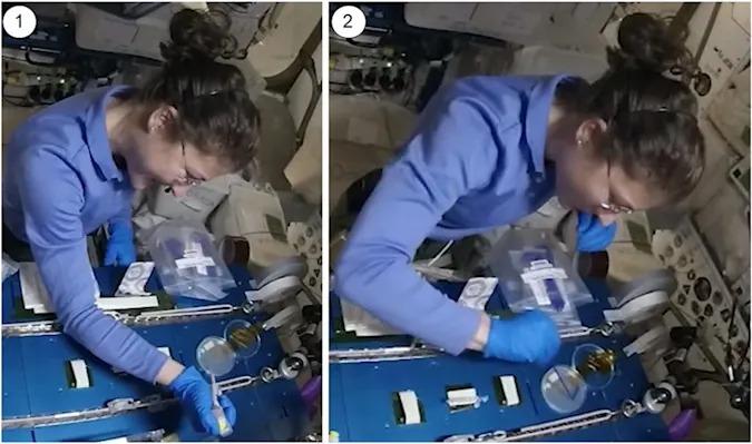 Sebastian Kraves and NASA
