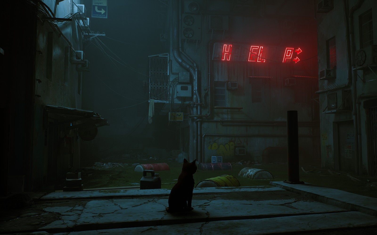Cat simulator 'Stray' heads to PlayStation and PC in early 2022