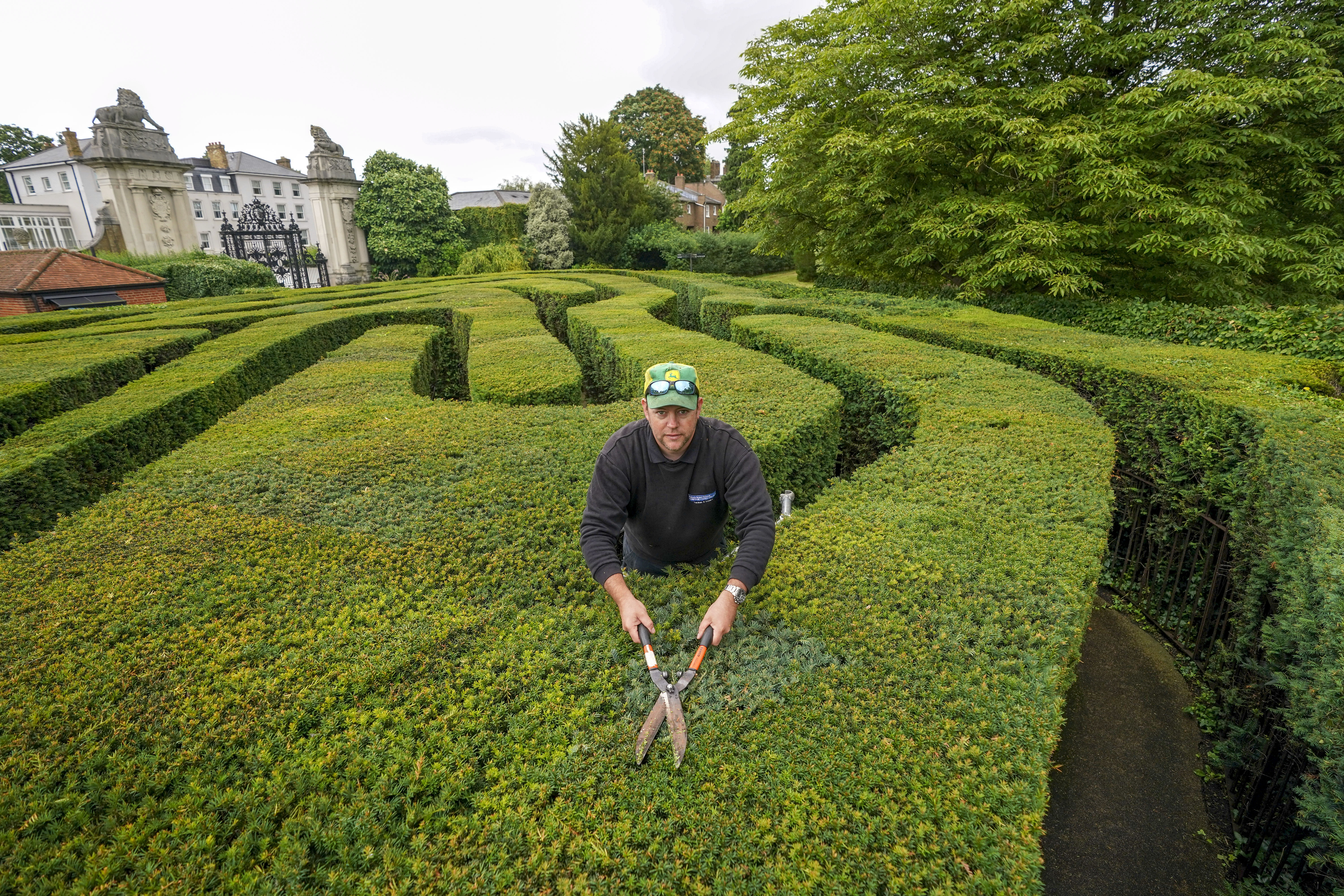 <p>Hampton Court Palace gardener Anthony Bubb undertakes a final trim of the palace's maze in Surrey, before it reopens to visitors for the first time since March 2020. Picture date: Friday July 30, 2021.</p>