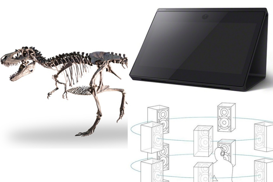 SONY DinoScience