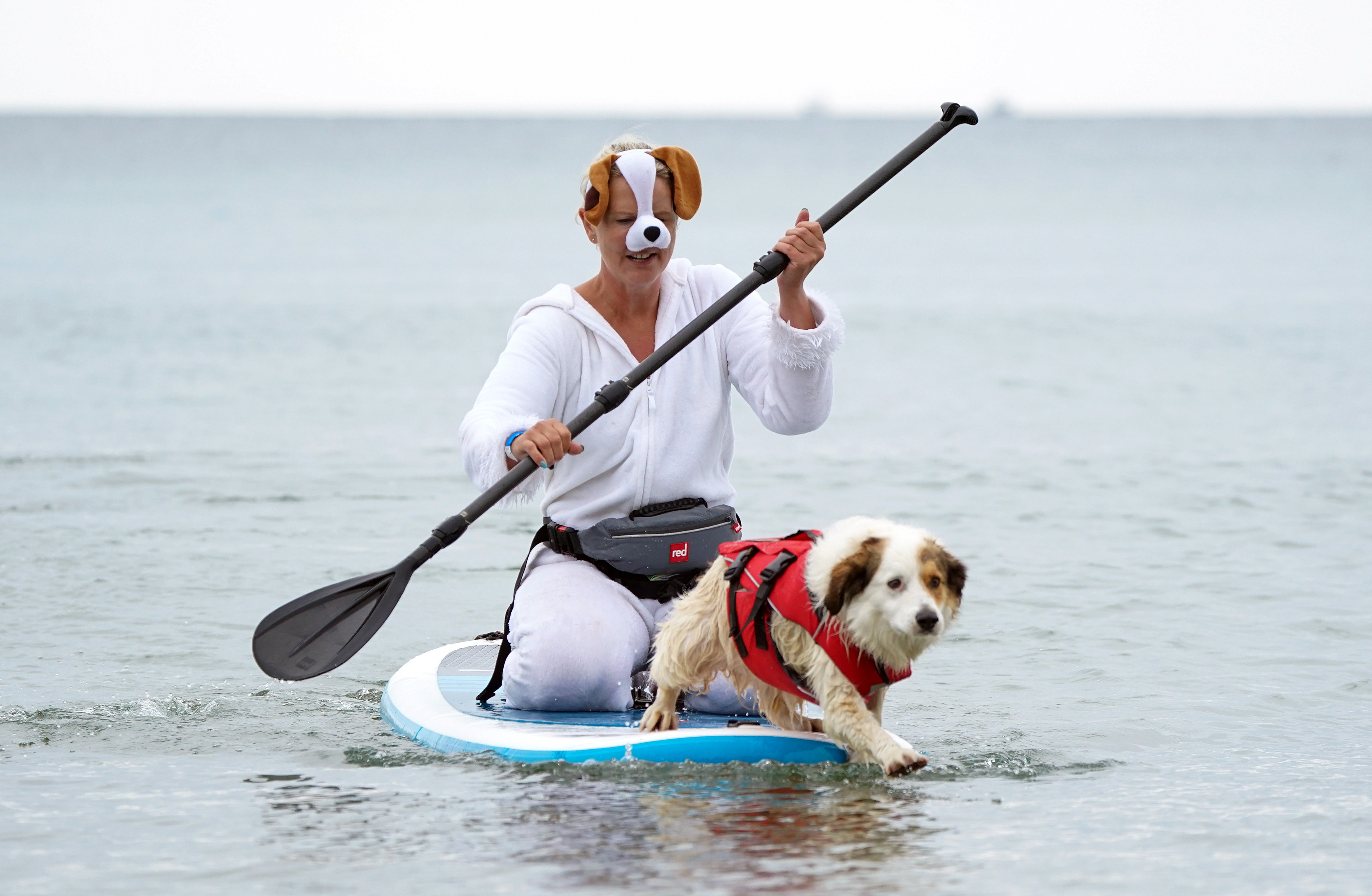 <p>Liz Wilkinson and her dog Diogie, a Sprollie cross, take part in Dogmasters, the country's only dog surfing and paddleboard championship, at Branksome Beach in Poole, Dorset. Picture date: Sunday July 25, 2021.</p>