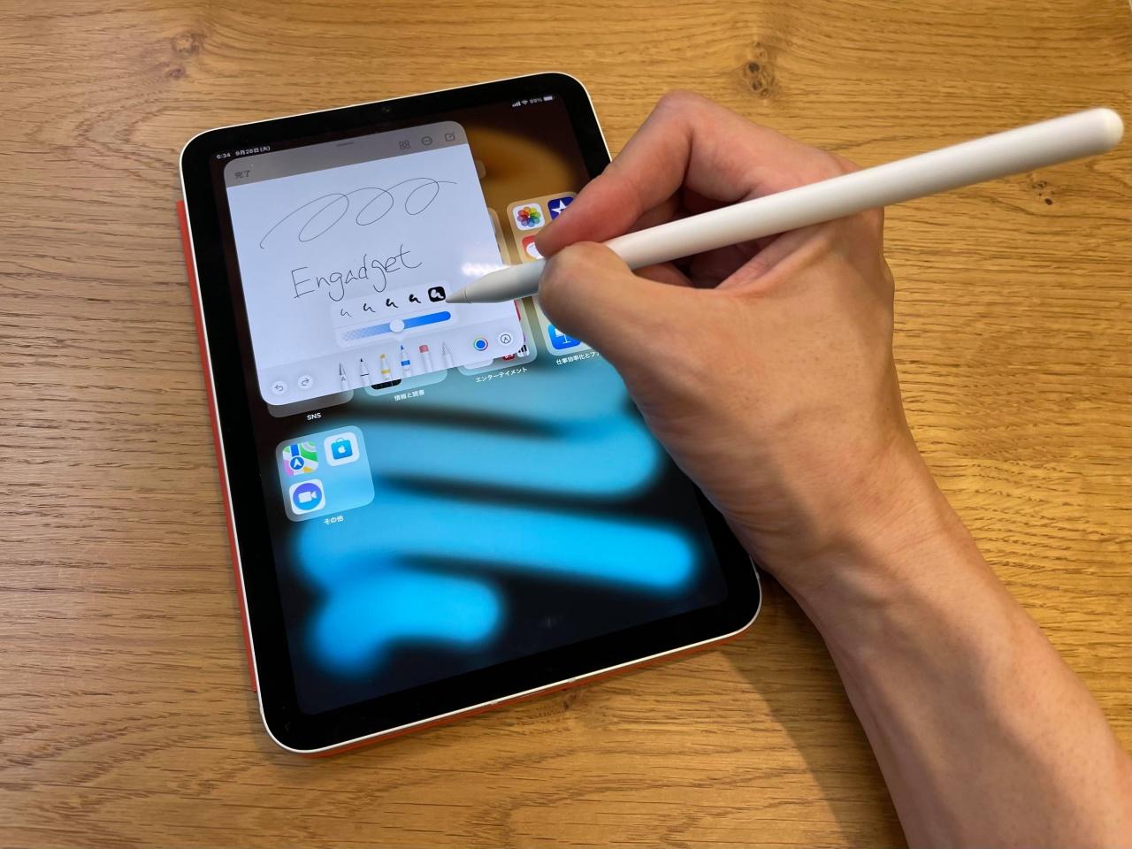 Apple iPad Ishikawa