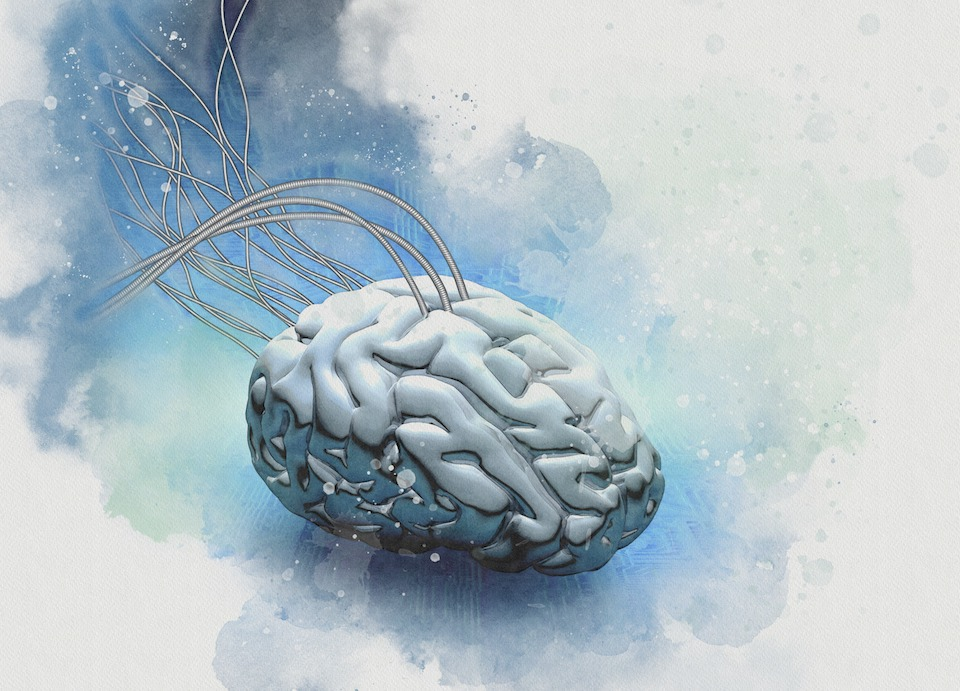 Neuromorphic engineering, conceptual illustration.
