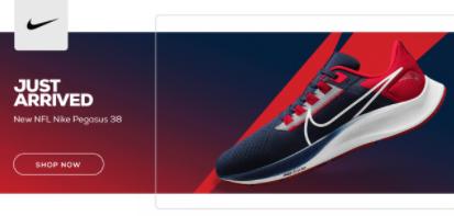 2021 NFL Nike Pegasus 38 Sneakers