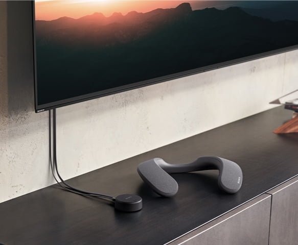 Sony SRS-NS7 wireless neckband speaker and WLA-NS7 transmitter.