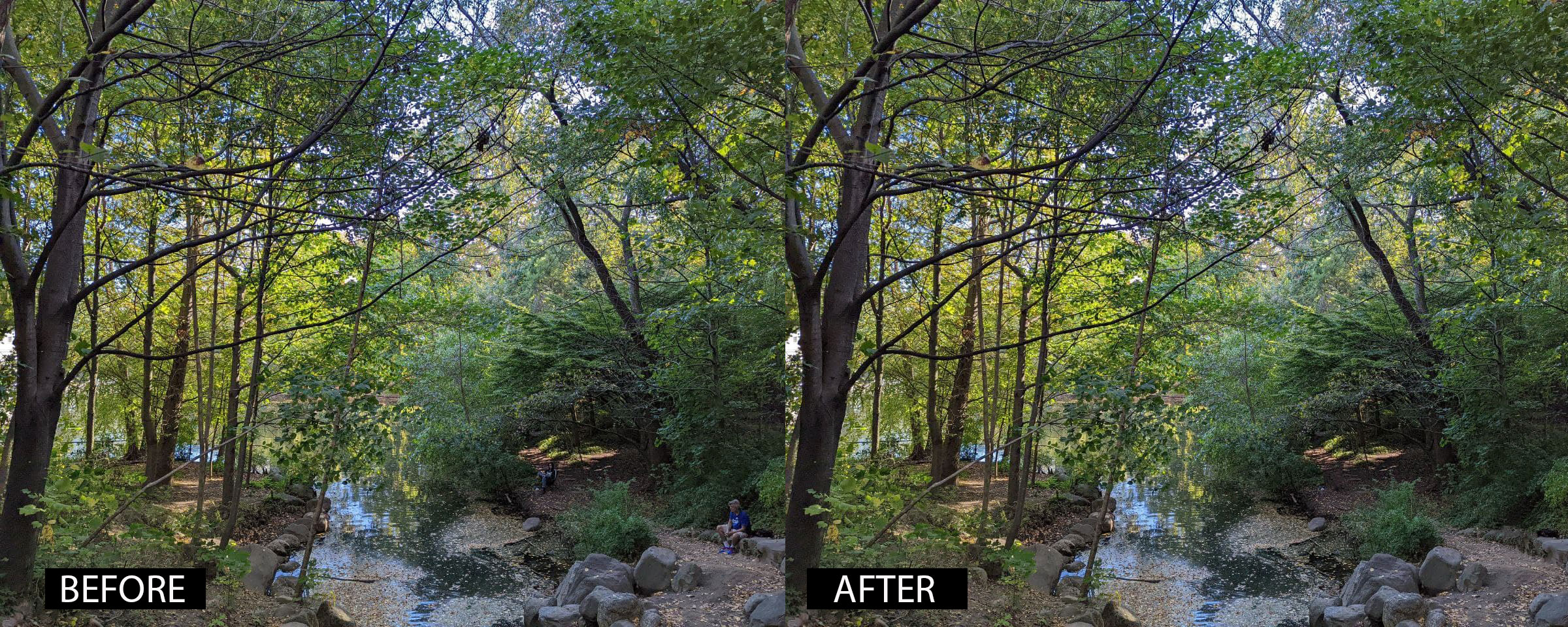 Pixel 6 camera mode samples. A composite showing a picture of a stream before and after Google's Magic Eraser removed two people sitting on the bank.