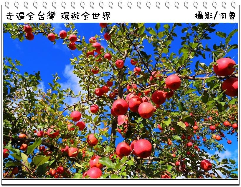 nEO_IMG_68-1.jpg