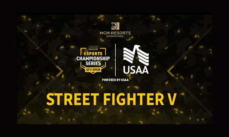 US Army Street Fighter Esports