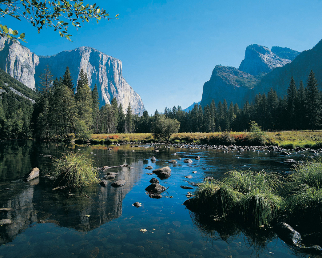 Yosemite National Par