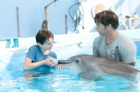 'Dolphin Tale' Sequel In Works, Release Date Set