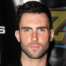 'The Voice's Adam Levine To Star In 'Can A Song Save Your Life?'