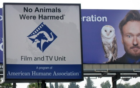 "AHA's Animal Film/TV Confab ""Productive"" Today"