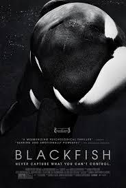 Cinema Eye 'Unforgettables' Docu Honors Celebrate Mass Killer, Whale