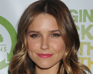 Pilot Scoop: Sophia Bush, Rebecca De Mornay Join NBC's Hatfields & McCoys