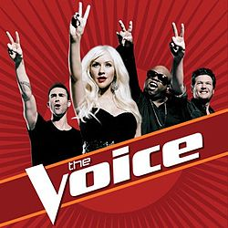 'The Voice' vs. 'American Idol': Who's the Social Media Champ?