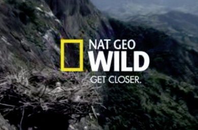 BBC, National Geographic Team for Nature Series