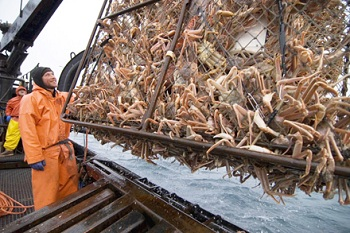 Ratings: 'Deadliest Catch' Grabs 2.8M; 'Inside Amy Schumer' Gets Solid Start