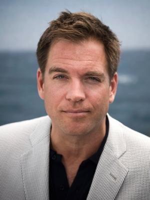 'NCIS' Star Michael Weatherly, Wife Expecting Second Child