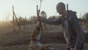 Oscars: Slovakia Nominates 'My Dog Killer' for Foreign Film Category
