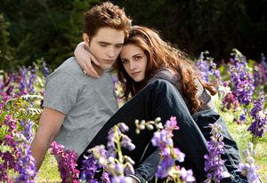 Robert Pattinson and Kristen Stewart | Photo Credits: Andrew Cooper/Summit Entertainment, LLC