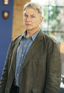 Mark Harmon | Photo Credits: Cliff Lipson/CBS