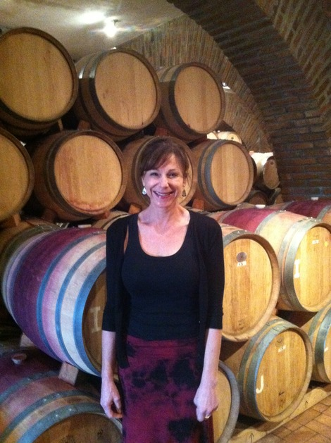 Buying Wine From the Source on Ruta Del Vino