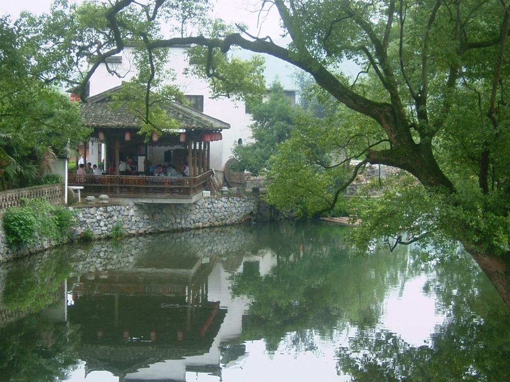 圖/嚴田古樟(圖由馳騁旅遊提供)