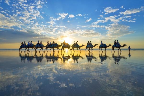 凱布爾海灘駱駝隊伍在夕陽西下時從海灘上經過。(圖片來源/trover)