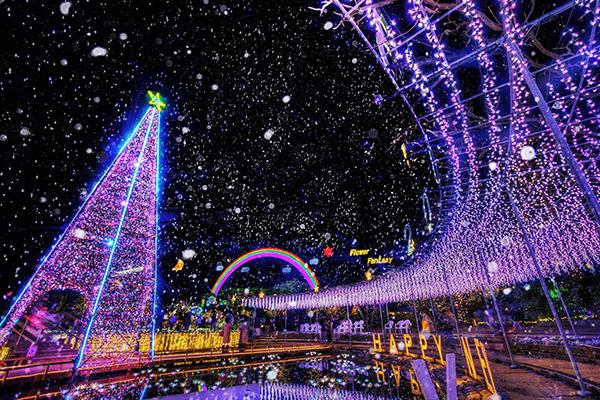 足利花卉公園光之花的庭院 (圖/あしかがフラワーパーク/Ashikaga Flower Park)