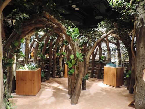 穿過森林隧道走進店內就能來到橡子共和國的世界
