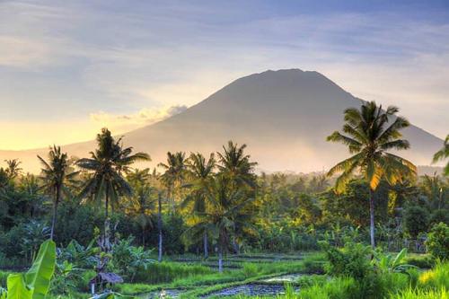 印尼峇里島更是許多人熱愛的渡假勝地