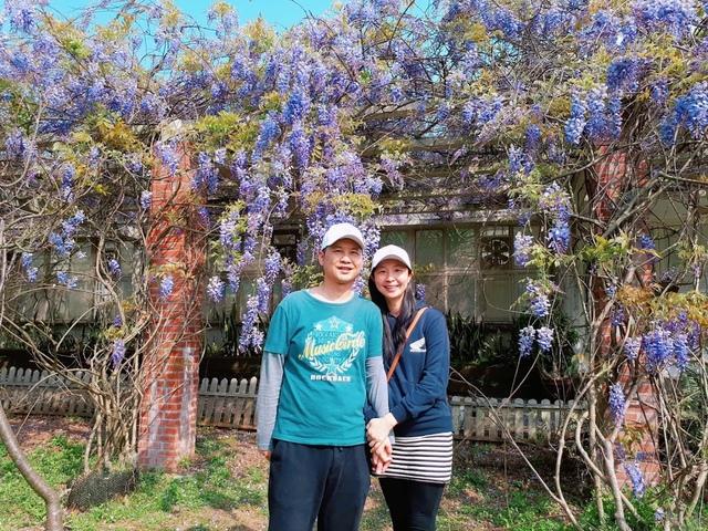 2018-03-25-09-29-33.jpg - 2018陽明山櫻花季