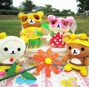 蜜蜂草裙拉拉熊