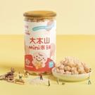 【愛吾兒】農純鄉 大本山mini米餅 40g