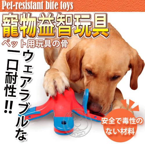 【ZOO寵物商城】美國KYJEN》酷迪寵物益智玩具火山尋寶狗玩具
