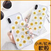 夏日小清新小米9手機殼小米8保護殼 小米8 Pro全包邊軟殼 小米8lite手機殼 小米6 小米A2雛菊透明殼