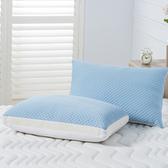 空氣涼感防螨抗菌記憶枕-標準型/加高型各1入合購